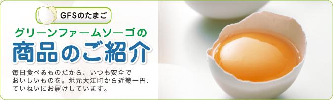 GFSのたまご グリーンファームソーゴの 商品のご紹介 毎日食べるものだから、いつも安全でおいしいものを。地元大江町から近畿一円、ていねいにお届けしています。