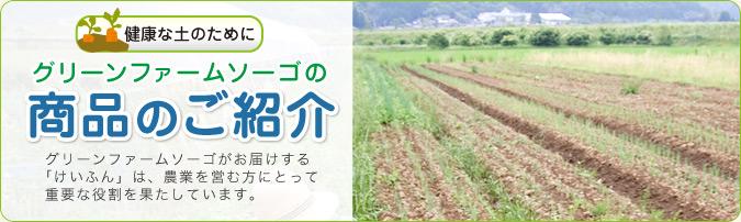 グリーンファームソーゴがお届けする「けいふん」は、農業を営む方にとって重要な役割を果たしています。